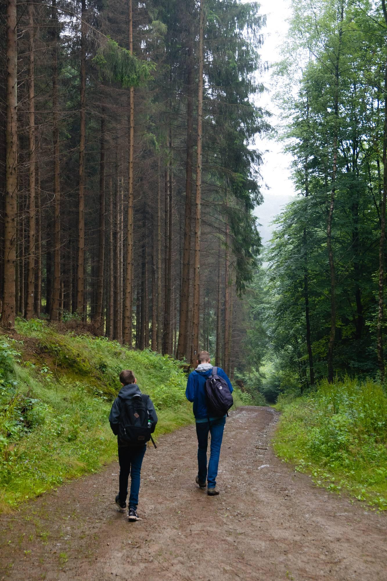 Wald Beyenburg